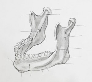 Effects on Jaw from Bruxism diagram
